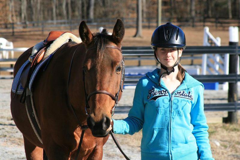 Horses 076rs