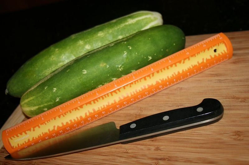 Cukes & quilt 004.jpgrs