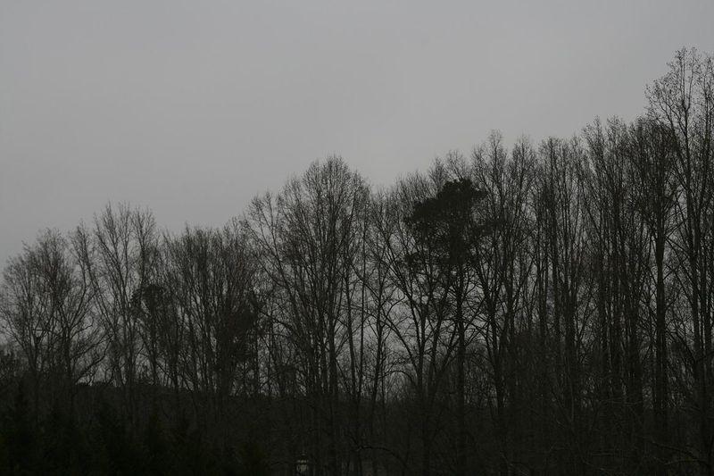 Radar 003.jpg rs