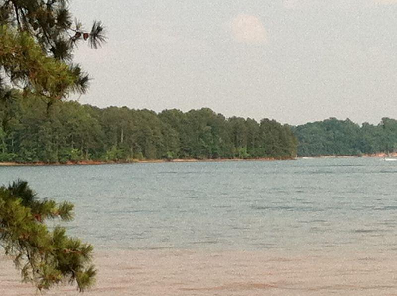 2011-5-29 lake 019