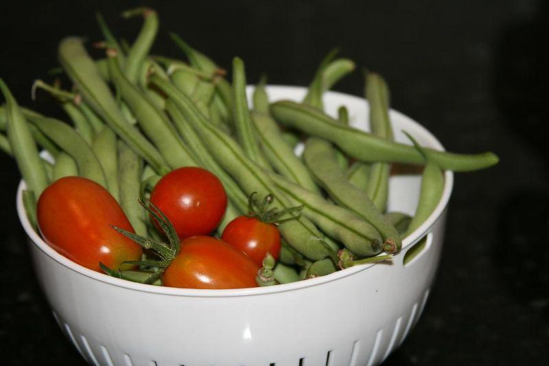 2011-6-6 harvest 011rs