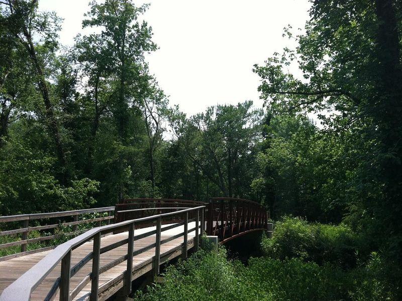 2011-6-12 park 005rs