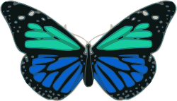 Butterfly_02_Turquoise_Blue